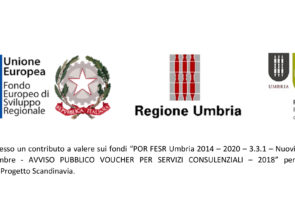POR FESR Umbria 2014 – 2020 – 3.3.1 – Tecnokar Srl Progetto Scandinavia